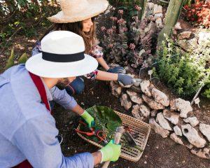 Buddeln, pflanzen, gießen und genießen